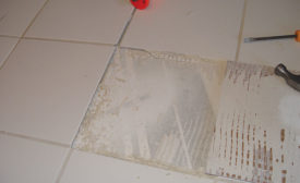 tile bonded to paint