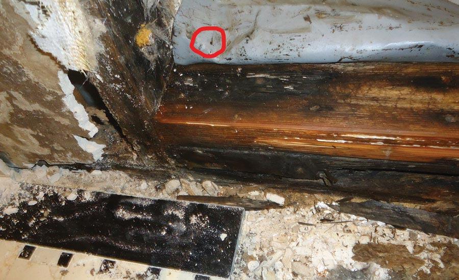 Ctef Tile Tip No Drilling Allowed 2019 06 17 Floor